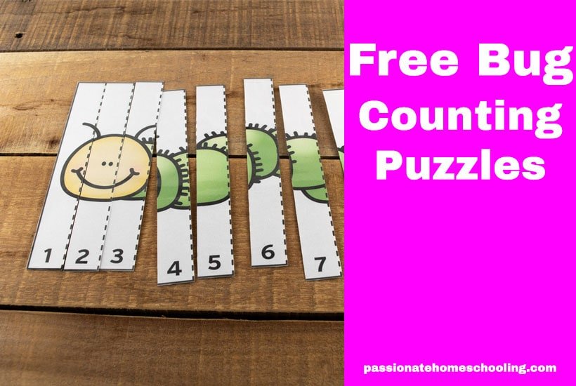 Bug Counting Puzzles