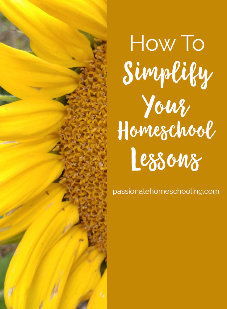 How To Simplify Your Large Family Homeschool Lessons! Use multi-level unit study curriculum and living books to simplify your lessons and teach multiple ages at once.