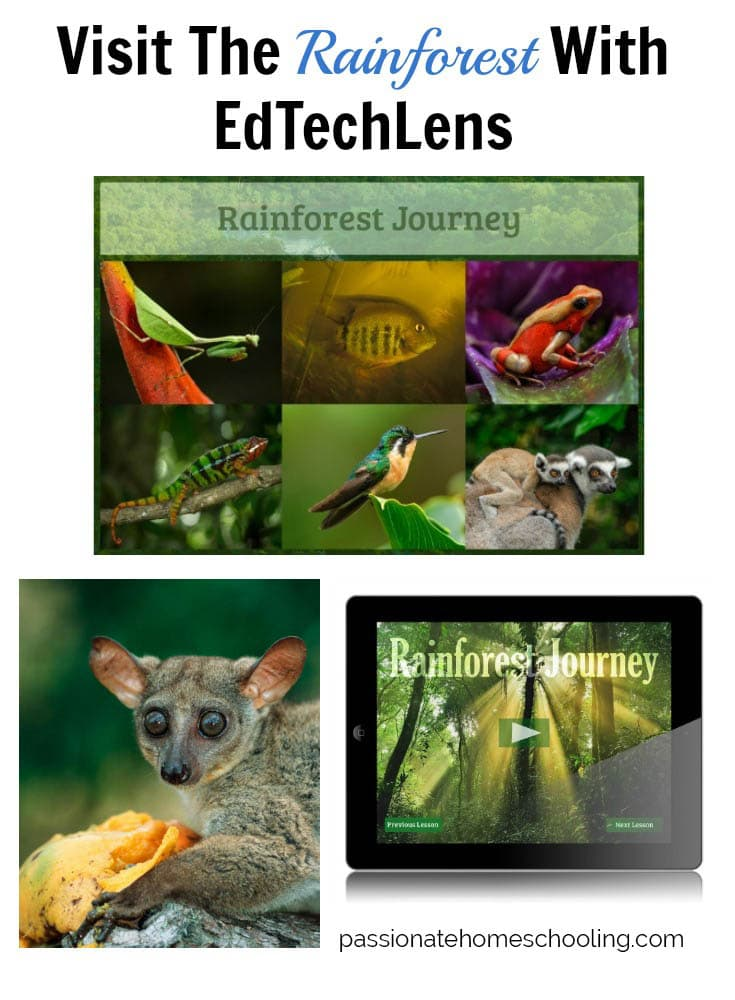 Learn About The Rainforest. Rainforest Journey is an easy to use life science supplement program. It uses gorgeous photos of rainforest life, to introduce children to this magical world.