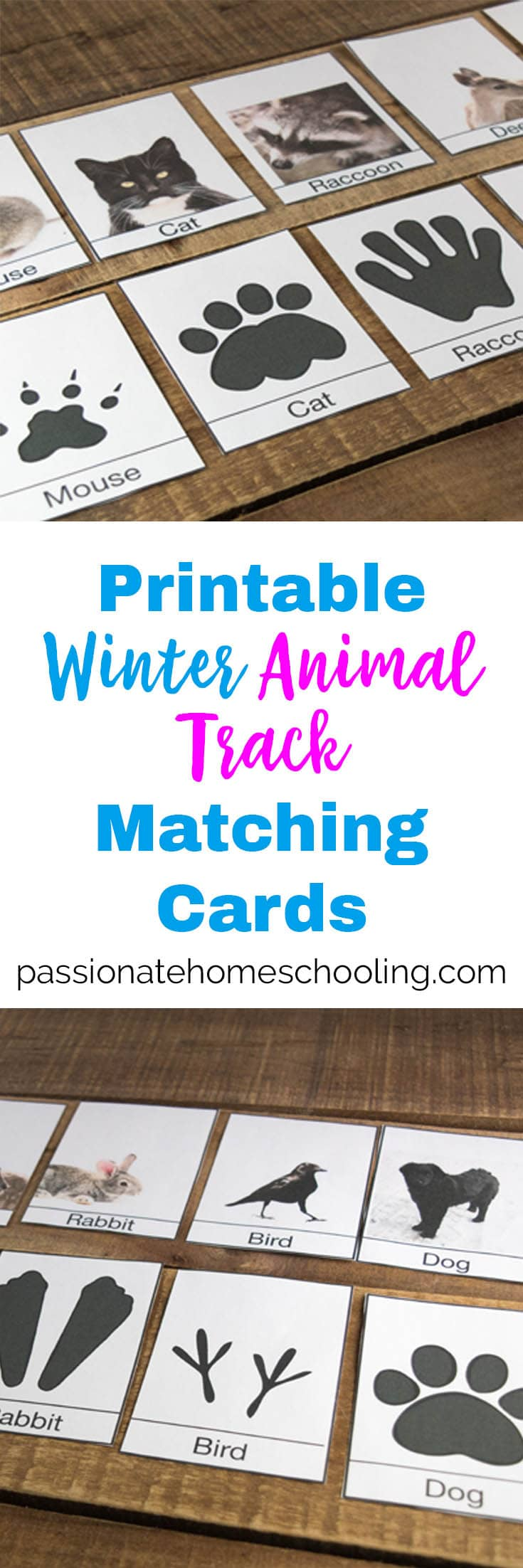 photo about Printable Animal Tracks named Absolutely free Printable Wintertime Animal Music Id