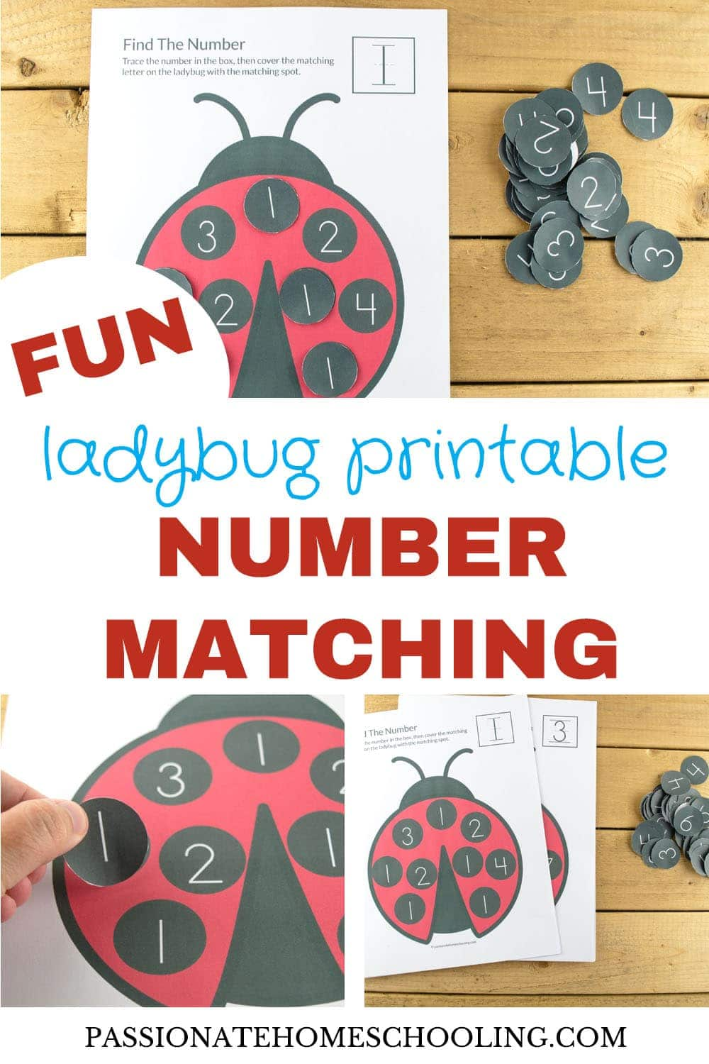 Fun Ladybug Number Matching Printable