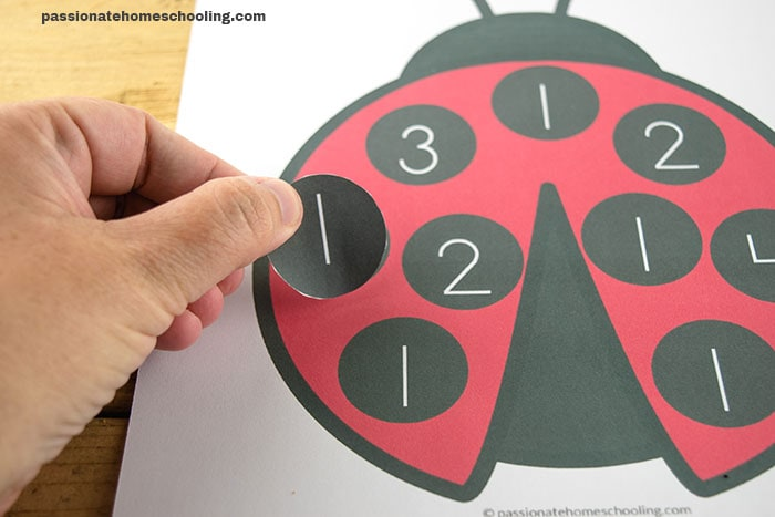 Ladybug Number Matching Activity