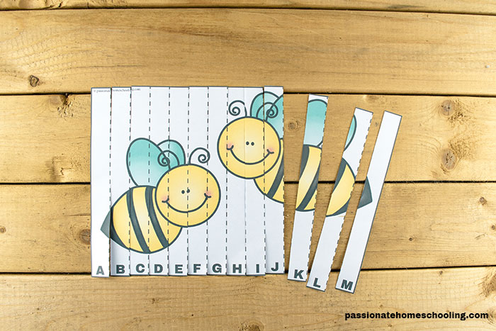 Printable Bug Letter Puzzles